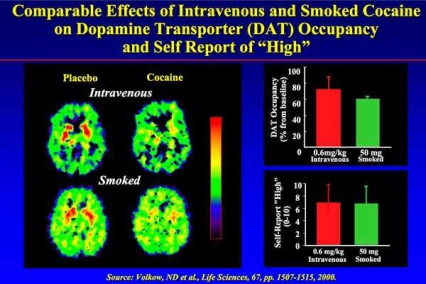 Comparable Effects of IV and Smoked Cocaine on Dopamine Transporter Occupancy and self report of High